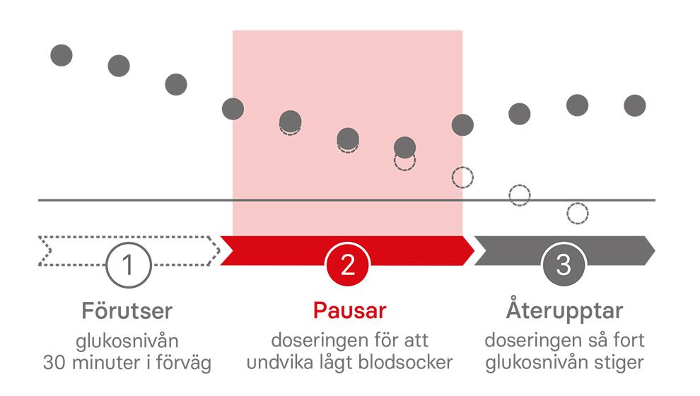 graf rubin medical